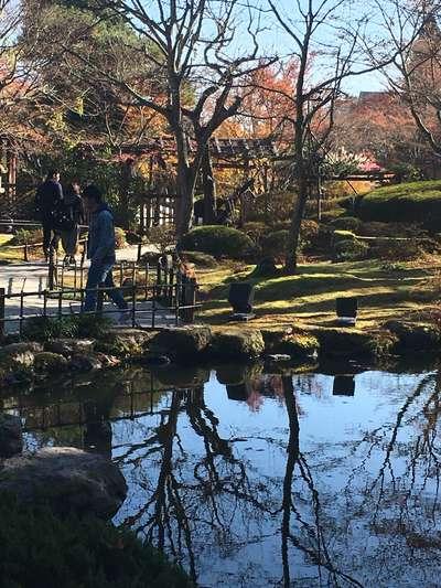 宮城県円通院の庭園