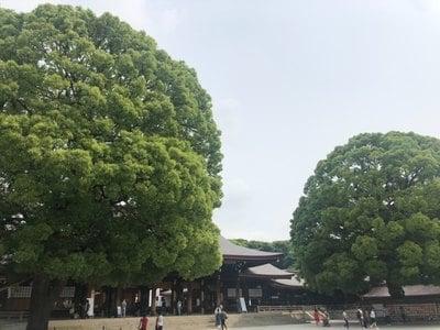 明治神宮(東京都原宿駅) - その他建物の写真