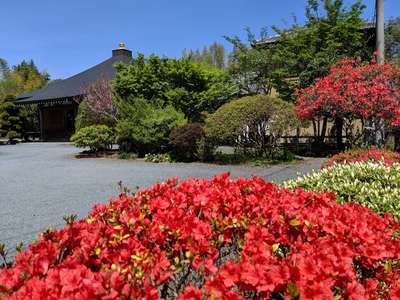 茨城県一心寺の写真