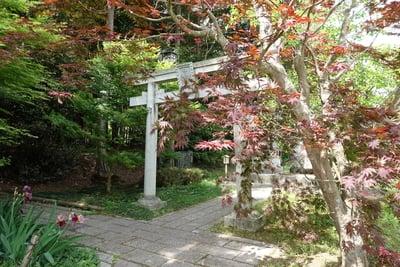 京都府稗田野神社の鳥居