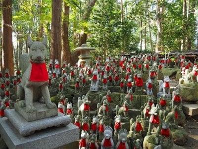 豊川閣 妙厳寺(豊川稲荷)(愛知県豊川稲荷駅) - 狛犬の写真