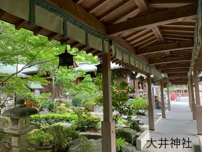 大井神社(静岡県)