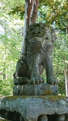義經神社の狛犬