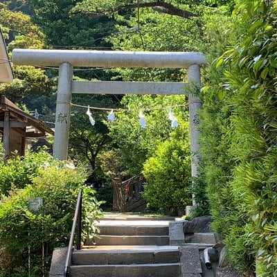 神奈川県御霊神社の鳥居