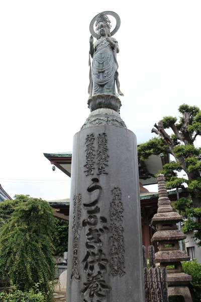 東京都妙行寺の写真