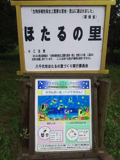 千葉県乳清水神社の周辺