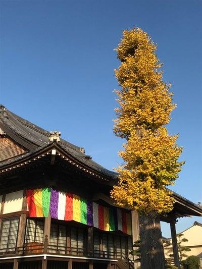 明願寺の本殿