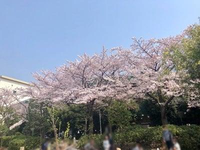 おりひめ神社の自然