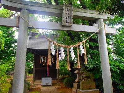 千葉県米本神社の鳥居
