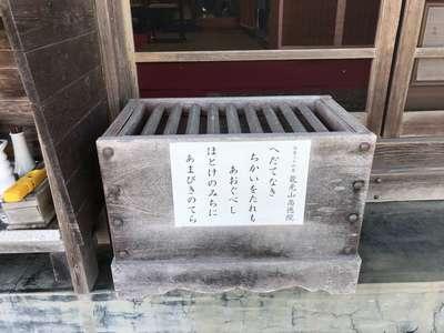 千葉県高徳院の写真
