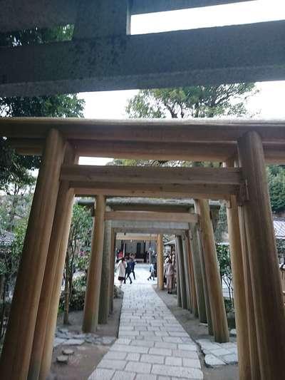 銭洗弁財天宇賀福神社(神奈川県)