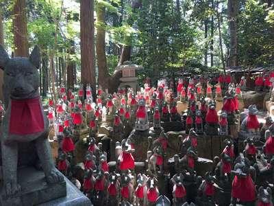 豊川閣 妙厳寺(豊川稲荷)(愛知県豊川稲荷駅) - 像の写真