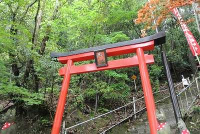 岡山県最上稲荷山妙教寺の鳥居