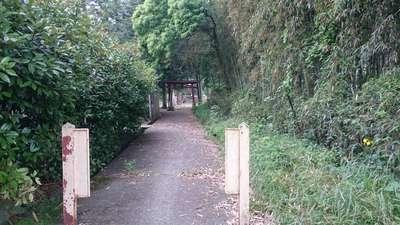 栃木県八幡神社の写真
