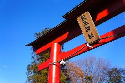 埼玉県飯玉神社の写真