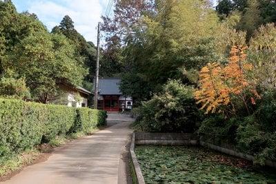 本休寺の本殿