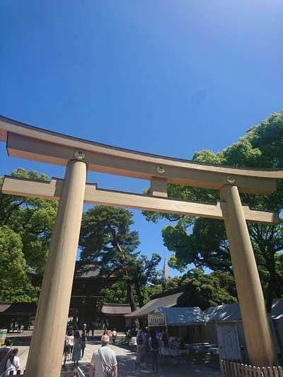 東京都明治神宮の鳥居