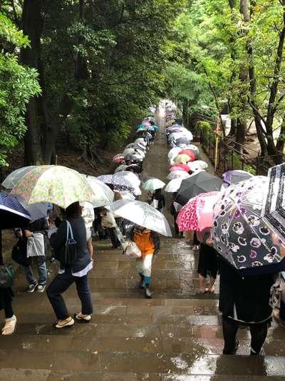 國學院大學神殿の近くの神社お寺|渋谷氷川神社