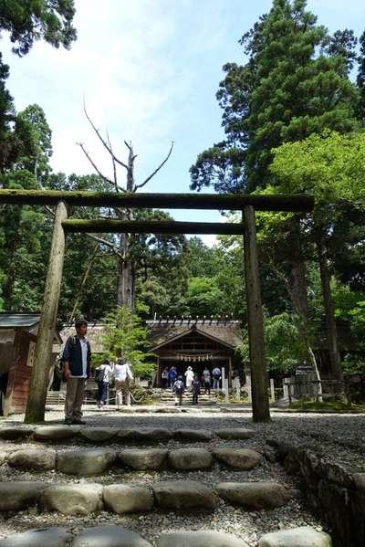 京都府皇大神社の写真
