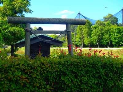 埼玉県水神宮の鳥居