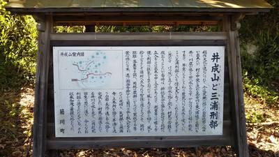 静岡県井成神社の写真
