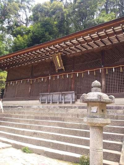 京都府宇治上神社の本殿