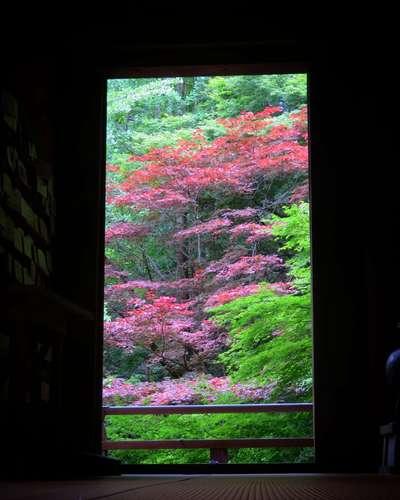 圓教寺(兵庫県)