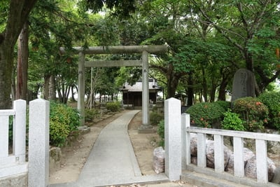 新屋座天照御魂神社の鳥居