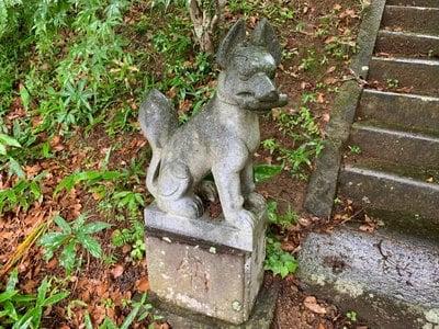 瘡守稲荷の狛犬