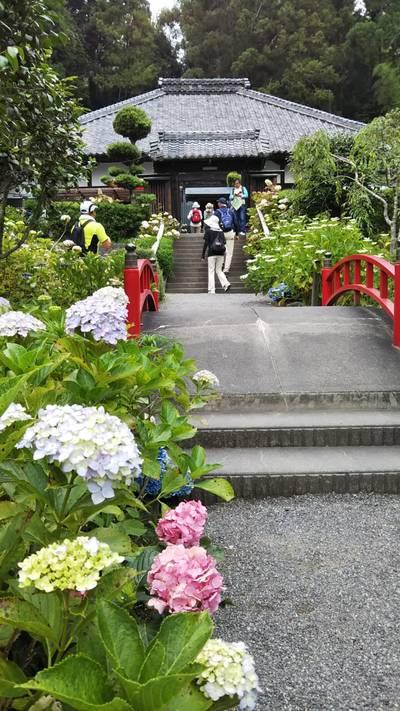 極楽寺(静岡県)