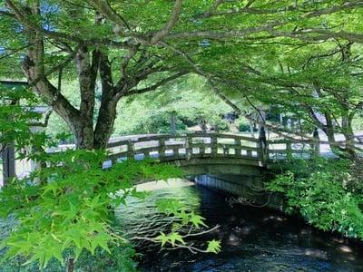 土津神社の庭園