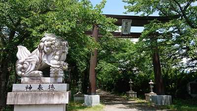 冨士御室浅間神社の狛犬