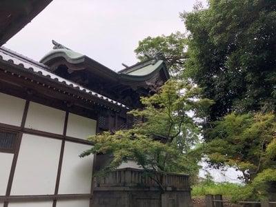香川県鰐河神社の写真