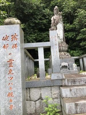 福島県円通寺の仏像