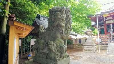 南沢氷川神社の狛犬