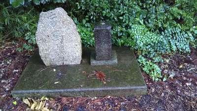 須賀神社(茨城県)