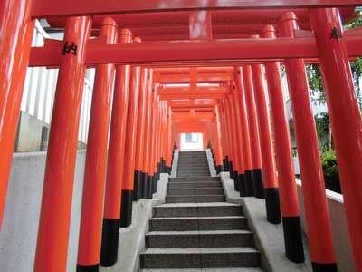 神奈川県神鳥前川神社の鳥居