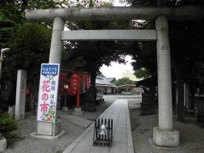 神奈川県伊勢原大神宮の鳥居