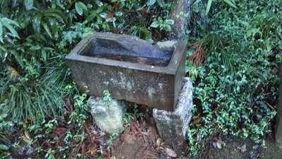 茨城県鹿島神社の写真