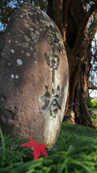 群馬県崇禅寺の写真