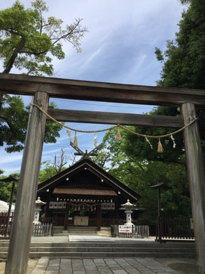 大阪府大鳥大社(大鳥神社)の鳥居