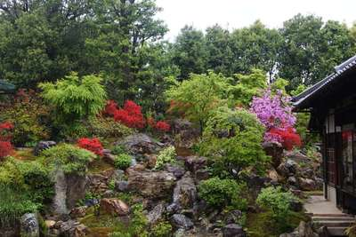 大徳寺の自然