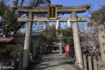 大阪府豊崎神社の鳥居