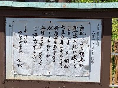 上沢寺の建物その他
