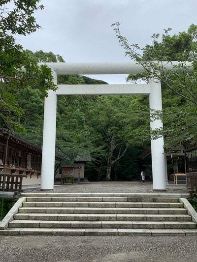 千葉県安房神社の鳥居