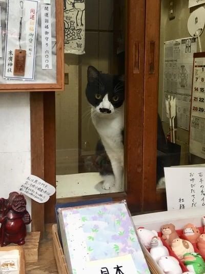 末廣神社の動物