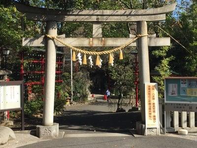 東京都居木神社の鳥居