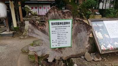 熊本県青井阿蘇神社の建物その他