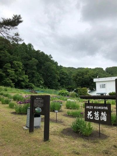 義經神社の庭園