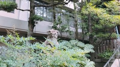 金刀比羅宮東京分社の狛犬